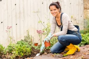 Essential Fall Gardening Tips
