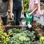 Growing a garden on your property